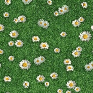 цвет Ткань «Ромашки на зеленом»