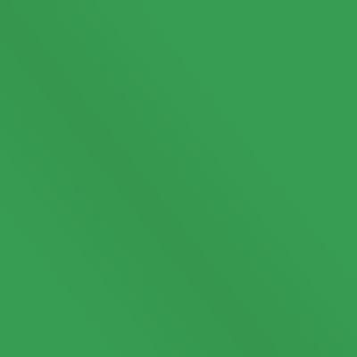 Зеленый (флок)