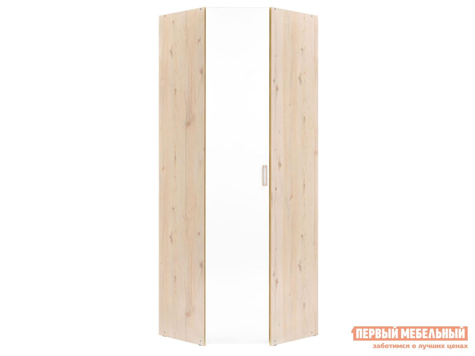 Угловой распашной шкаф Первый Мебельный Шкаф угловой Витра