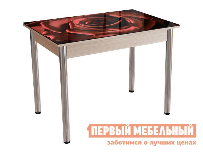 Кухонный стол Стол обеденный Белла Фотопечать Роуз, Дуб молочный/Хром фото