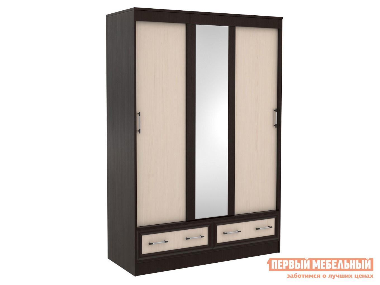Шкаф-купе с выдвижными ящиками Первый Мебельный Модерн