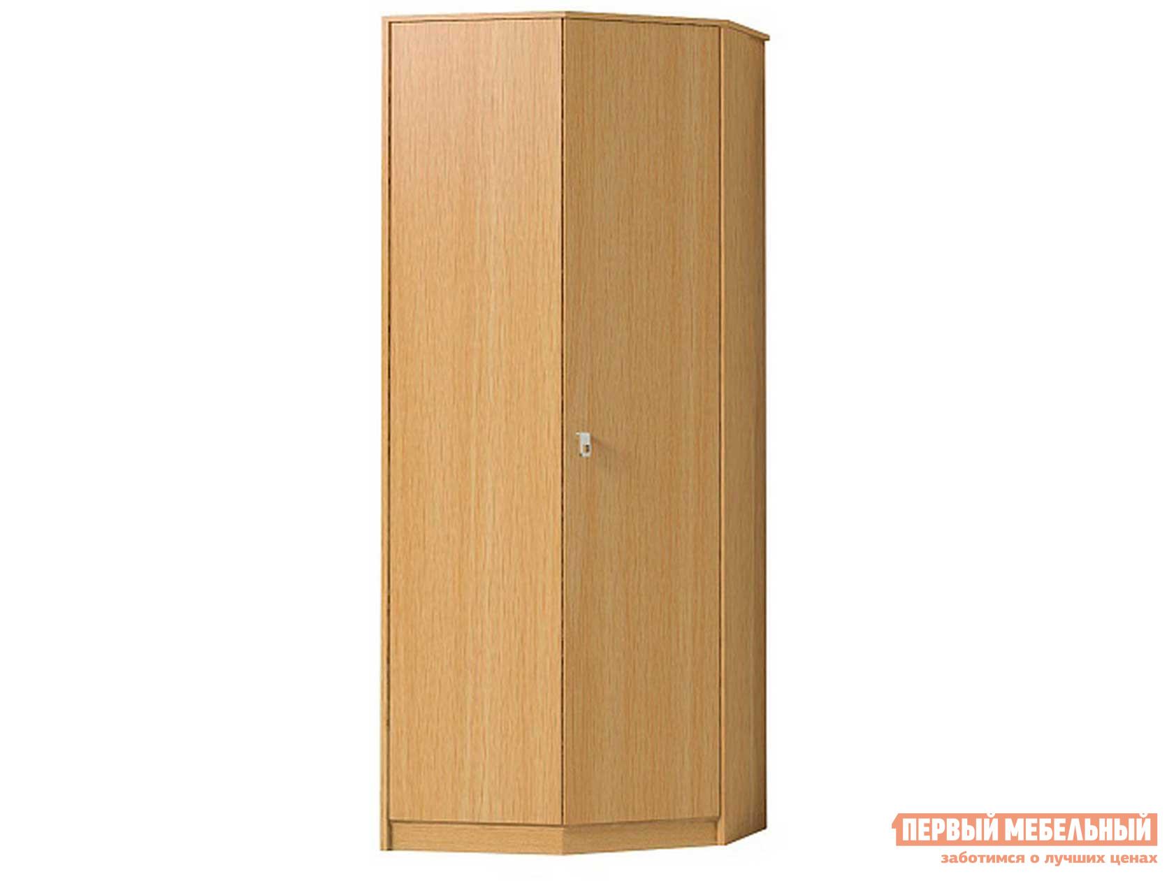 Шкаф распашной ТД Арника Комфорт (прихожая) Шкаф угловой 5