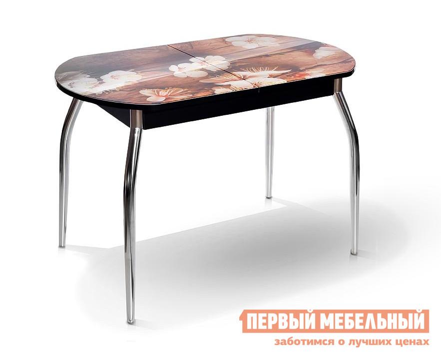 Кухонный стол МегаЭлатон Сиена-Мини со стеклом фотопечать (каркас черный) Абрикос / Черный каркасКухонные столы<br>Габаритные размеры ВхШхГ 750x1120 / 1440x650 мм. Компактный обеденный стол с яркой фотопечатью.  Подобрав подходящий для себя вариант расцветки, вы сможете создать индивидуальный и неповторимый дизайн кухни.  Удобный в использовании шариковый механизм позволяет быстро раздвинуть стол. Размер стола:В собранном виде (ВхШхГ): 750 х 1120 х 650 мм;В разложенном виде (ВхШхГ): 750 х 1440 х 650 мм;Металлические ножки выполнены из хромированной металлической трубы.  Каркас изготовлен из ЛДСП толщиной 16 мм.  Торцевые части облицованы противоударной пленкой ПВХ толщиной 2 мм.  Столешница выполнена из стекла с фотопечатью 4 мм.<br><br>Цвет: Коричневый<br>Высота мм: 750<br>Ширина мм: 1120 / 1440<br>Глубина мм: 650<br>Кол-во упаковок: 1<br>Форма поставки: В разобранном виде<br>Срок гарантии: 12 месяцев<br>Тип: Раздвижные<br>Тип: Трансформер<br>Материал: Дерево<br>Материал: Стекло<br>Материал: ЛДСП<br>Форма: Овальные<br>Размер: Маленькие<br>С металлическими ножками: Да<br>Глянцевые: Да