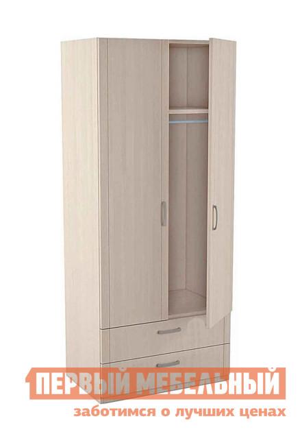 Шкаф детский Боровичи 5.28 Шкаф для одежды 2х дверный